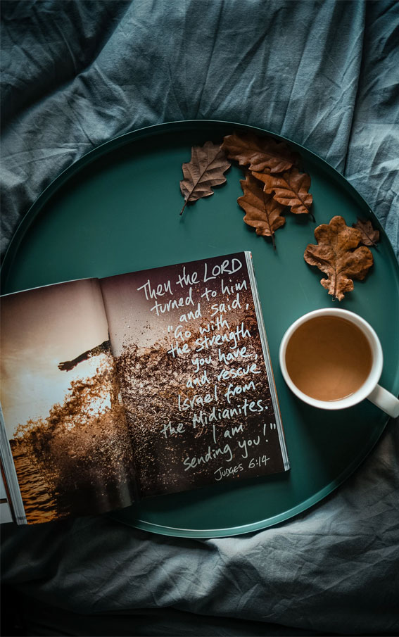 5 Book Aesthetic Images You'll Love – 2